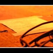 shakra_08_8.jpg