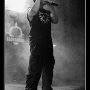faderhead-6