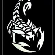 scorpions_40