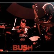 044-bush-13_11_11-oo