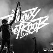 14-bloody-beetroots_01