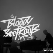 14-bloody-beetroots_08