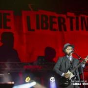 05-the-libertines_02