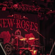 01_the-new-roses_01_0