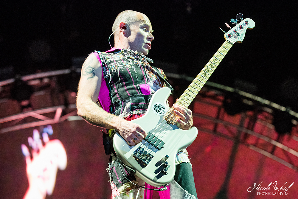 104-red-hot-chili-peppers-ni-4