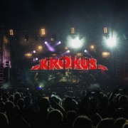 03_krokus-01