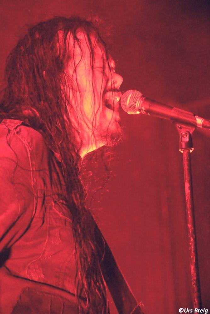 02-evergrey-01
