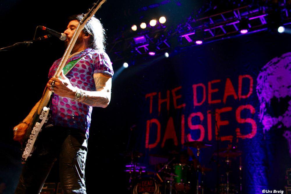 02-dead-daisies-03