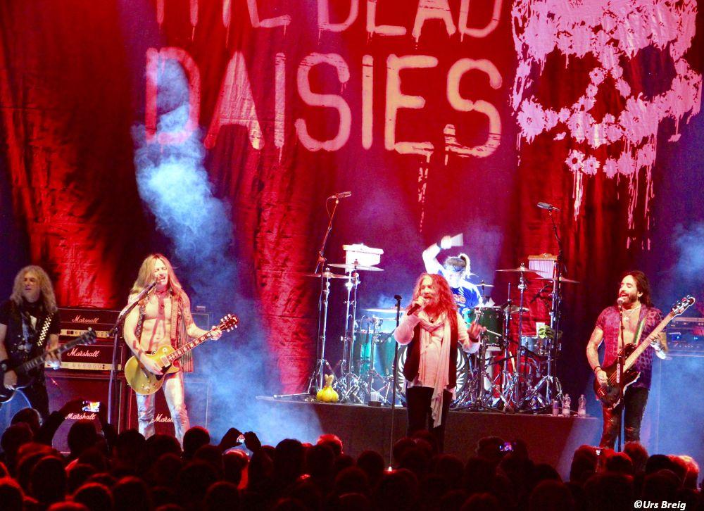 02-dead-daisies-17
