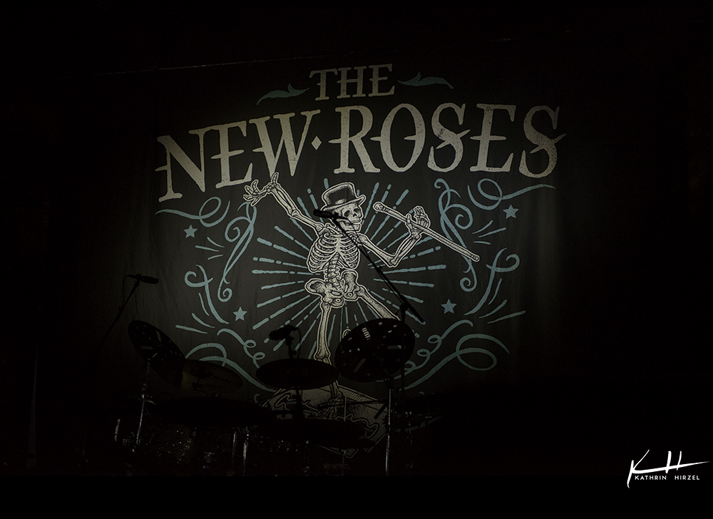 02-the-new-roses-001