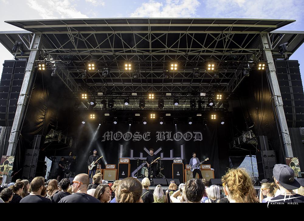 02-moose-blood-007