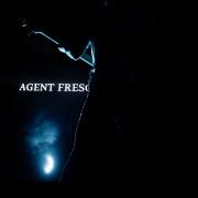 02-agent-fresco-001