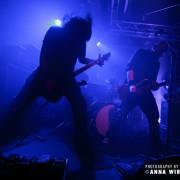 01_tyrannosaurus-globi-09