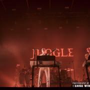 05_jungle-10