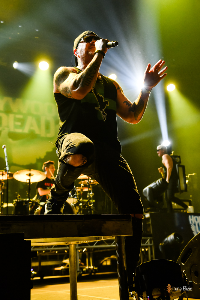 02hollywoodundead-20