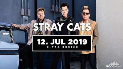 Stray Cats 2019-07-12